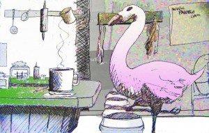 flamingocolor